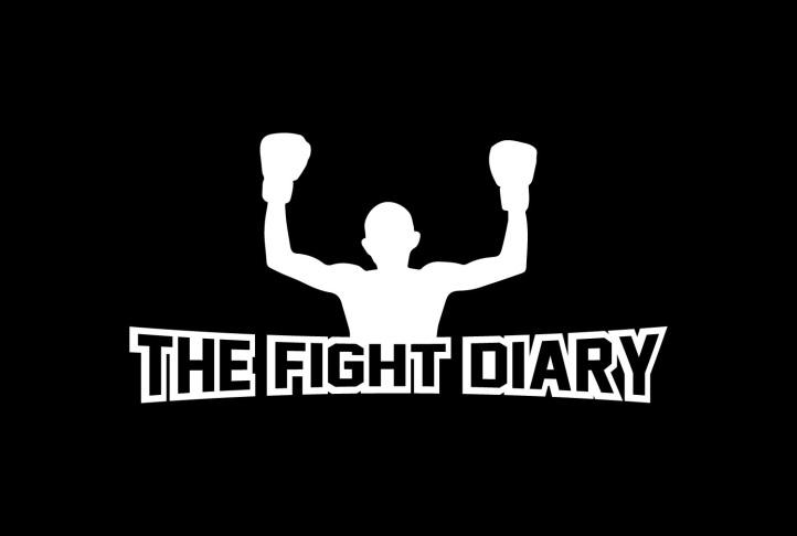 thefightdiary2